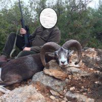 muflon-cazalastmoment